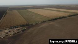 Сельскохозяйственные поля в Чаплинском районе