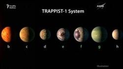 Həyat ola bilən 7 planet tapıldı