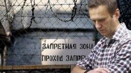 Aleksey Navalnı (kollaj)