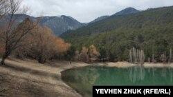Zeytin-Koş