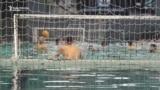 Partizan u ledenom bazenu