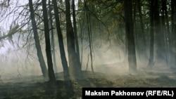 Пожар, иллюстрационное фото