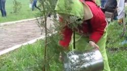 У Криму на вшанування жертв Голокосту саджали «дерева пам'яті»