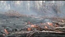 Kilauea vulkanından axan lava yaşayış məskənlərinə çatır