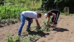 Studenti poljoprivrednici