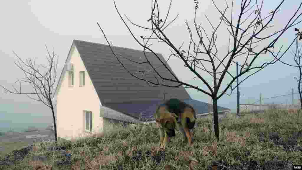 Aqmescit rayonınıñ Aratuq köyünde tuman