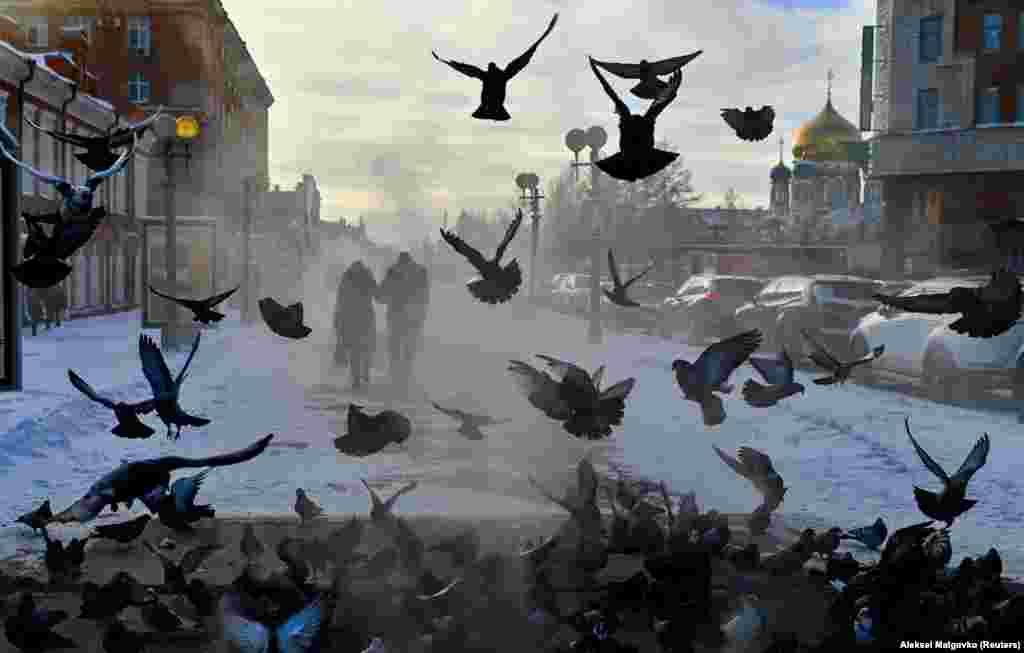 Një çift kalon pranë disa pëllumbave në një ditë të ftohtë në Omsk të Rusisë. (Reuters/Aleksei Malgavko)