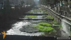 Հանքի շահագործման համար 7 հազար ծառ կհատվի