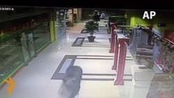 Bear Runs Wild In Russian Shopping Mall