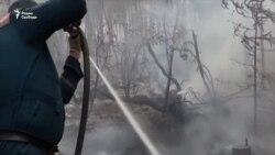 В Сибири горят леса
