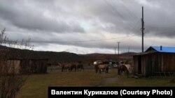 Поселок Уакит в Баунтовском районе Бурятии