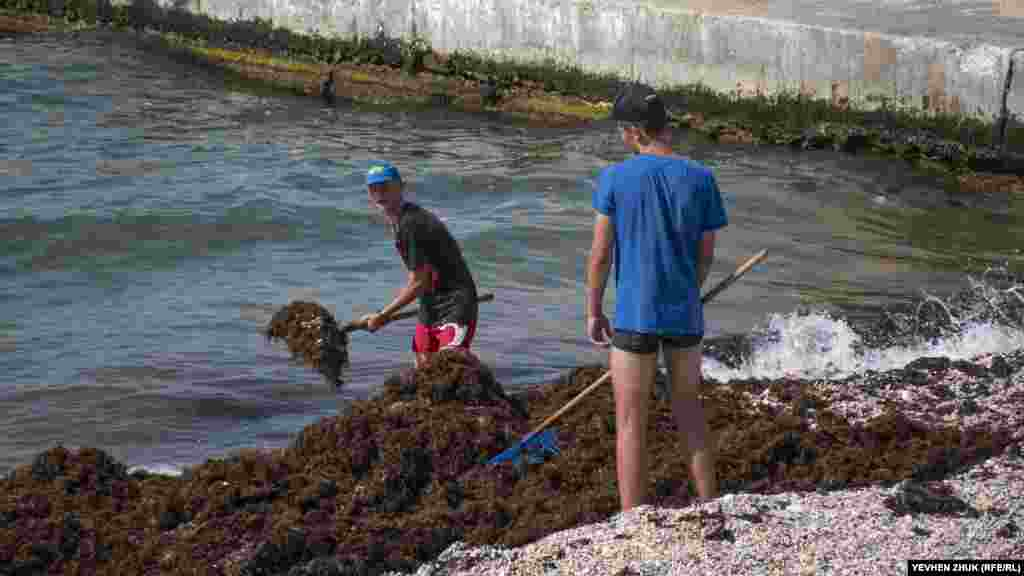Хлопці прибирають водорості, викинуті на берег після шторму