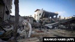 Primirje između Izraela i palestinske grupe Hamas stupilo je na snagu rano u petak ujutro 21. maja. I Izrael i Hamas su proglasili pobjedu u međusobnom konfliktu.