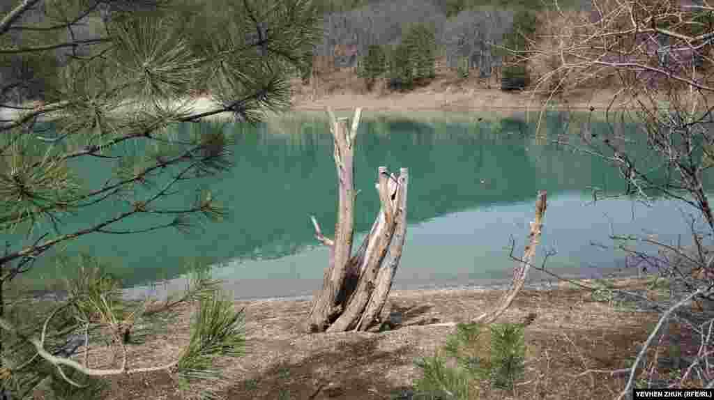 Бирюзовая гладь озера просвечивает сквозь деревья