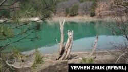 Firüze tüslü göl