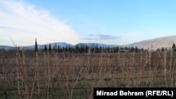 Mostar, vinogradi na ruti koridora Vc