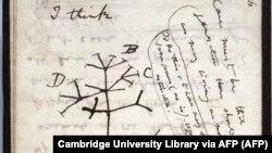 """Stranica iz nestale sveske u kojoj je Čarls Darvin 1837. nacrtao skicu """"Drveta života"""""""