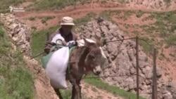 Майлуу-Суу: тар жол, тайгак кечүү
