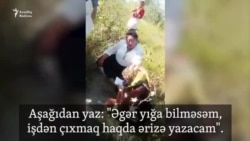 Həkimə zorla ərizə yazdırırlar: 'Əgər 50 kilo pambıq yağmasam...'