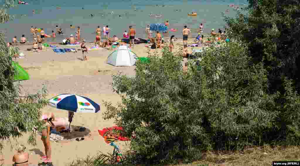 Від сонця пляжники можуть сховатися в тіні лохів вузьколистих
