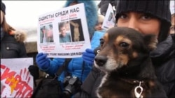 Protests Aim To Stop Killing Of Stray Dogs In Ukraine