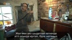 Астаналық мүгедектің лашығы