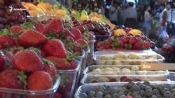 Крым VS Херсон. Где фрукты дешевле? (видео)