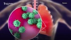 Pogubne posledice koronavirusa po svetsku ekonomiju