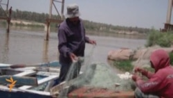 Iraqis Suffering Effects Of Pollution Of Tigris