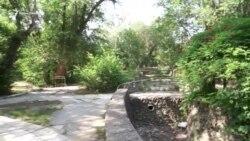 Курортный парк в Саках: как зеленая зона превращается в руины (видео)