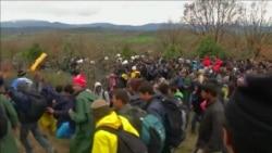 Стотици мигранти илегално влегуваат во Македонија