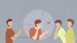 Муха Iалашвала веза коронавирусах: бакъдерг а, туьйранаш а (Видео)