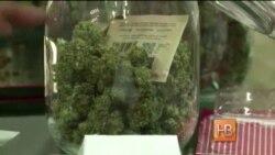 """Легализации """"травы"""" в Вашингтоне не будет"""