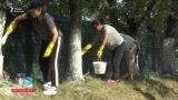 Из школы – на трассу, или Кого отправили белить деревья?
