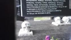 «Страх і патріотичне похмілля». Справа Сенцова в Ростові-на-Дону