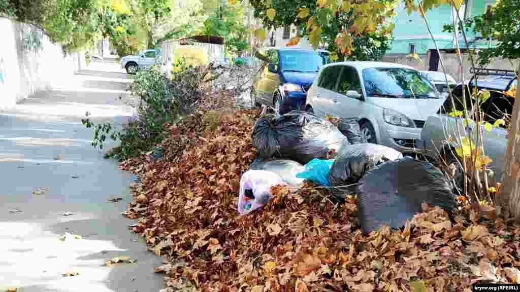 Осенняя пора, опадают листья