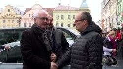 Научник против Земан на претседателските избори во Чешка