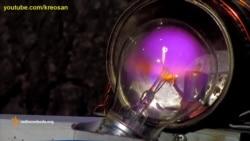 «Kreosan»: наукові експерименти під час війни на Донбасі