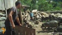 Լոռիում աֆրիկյան ժանտախտի համաճարակ է