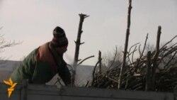 У менскім парку 40-годзьдзя Кастрычніка зноў валяць дрэвы