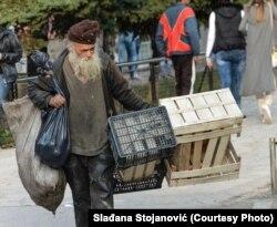 Rad Slađane Stojanović
