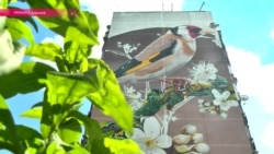 Не хуже Бэнкси: кто рисует картины на серых многоэтажках в Харькове?