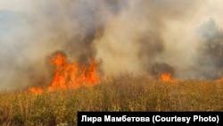 Пожары в Башкортостане, 9 августа 2021 года