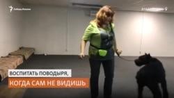 Незрячий тренер собак-поводырей не может получить документы из-за руководителей профессиональных школ