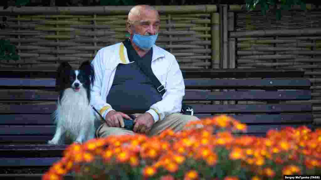 У Нікітському ботанічному саду проходить щорічний Бал хризантем «Осіння симфонія». У 2018 році під час балу висадили 333 сорти хризантем, у 2019 – 472, а вже в 2020 їх кількість досягла пів тисячі