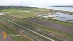 Голландиялик фермерлар денгиз сувида сабзавот етиштирди