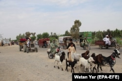 Afghans flee their villages during an ongoing large-scale attack by the Taliban in Helmand Province on May 4.