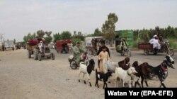 Gaçýan adamlar. Helmand, 4-nji maý, 2021