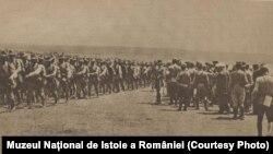 Trupe române în Dobrogea, 1916; sursa: Expoziția Marele Război, 1914-1918, Muzeul Național de Istoie a României