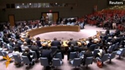 Russian, Ukrainian Ambassadors Trade Blame At UN Session